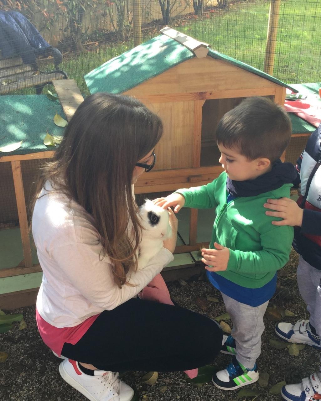 Coniglietti in asilo nido per crescere con i benefici della pet education