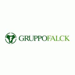 Gruppo Falck